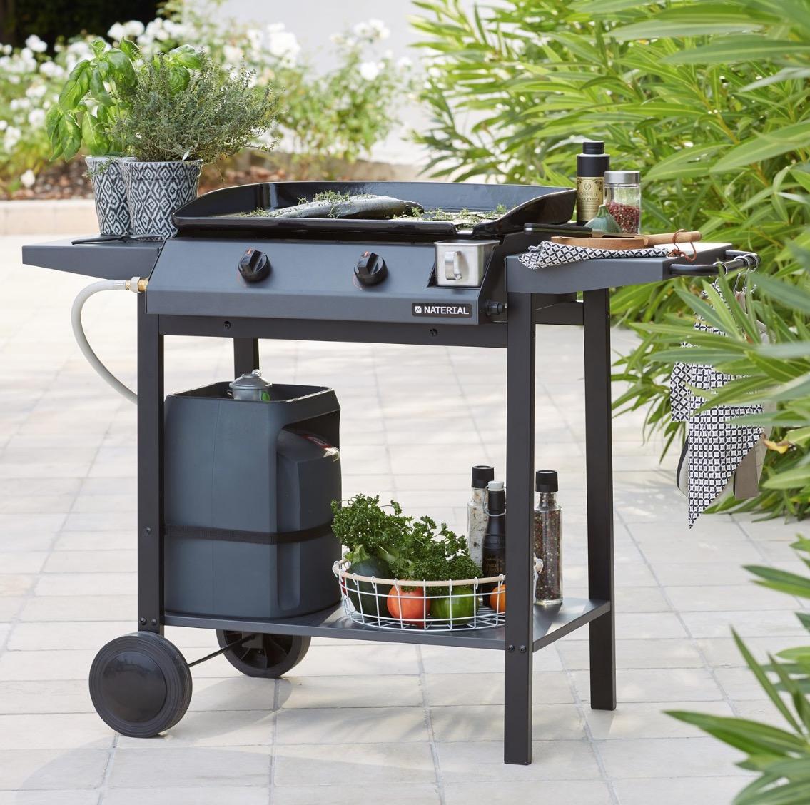 barbecue weber q3000 gaz
