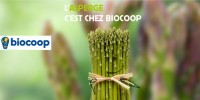 actu Le légume d'avril : l'asperge