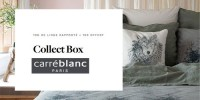 actu Collect box