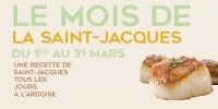 actu Le mois de la Saint-Jacques !