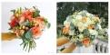 catalogue au nom de la rose de la saison - collection...