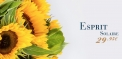 image monceau fleurs de la saison - collection ete