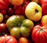 assortiment de tomates rondes cotelees et allongees