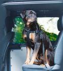 photo Harnais de sécurité de voiture pour chien