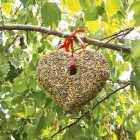 nourriture en forme de cur pour oiseaux dexterieur