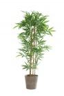 photo Plante artificielle