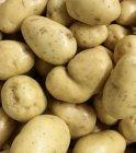 photo Pommes de terre de consommation