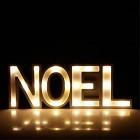 decoration noel lumineuse - 20 leds h14cm mots