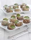 12 escargots de bourgogne recette a la bourguignonne