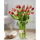 bouquet de 20 tulipes