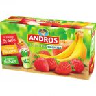 andros - desserts fruitiers