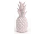 ananas riri