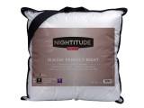 oreiller perfect night 60x60 cm nightitude premium