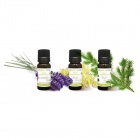 3 huiles essentielles be youaromazone by-he3lsl -lavandinlitseacutee sapin
