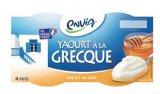 4 yaourts a la grecque sur lit de miel