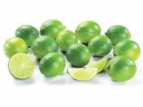 photo Citrons verts