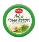 fromage a tartiner ail fines herbes