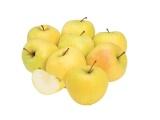 pommes golden bio