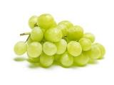 raisin blanc sans pepin