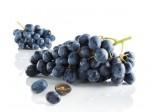 raisin muscat - origine france