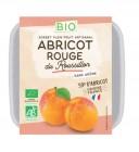 photo Sorbet à l'abricot Bio