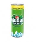 photo Uludag boisson turque rafraîchissante