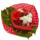 bouquet avec sisal