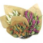 bouquet de 16 tulipes