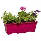 jardiniegravere de 4 plantes
