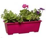 jardiniere 4 plantes