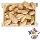 pommes de terre nouvelle recolte annabelle