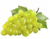 raisins blancs italia