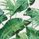 papier peint tropik vinyle sur intisse motif tropical vert